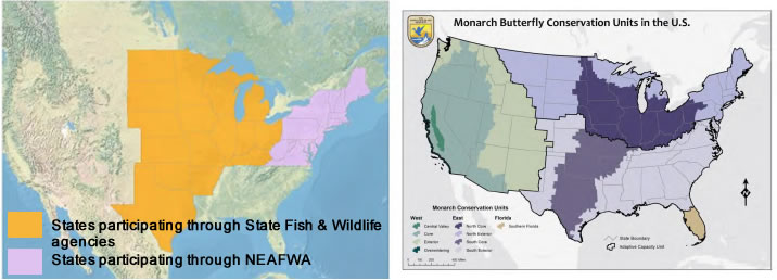 Monarch Conservation Geographic Priorities and Mid-American Monarch Conservation Strategy Geography